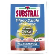 SO Syllit 65WP 45g Substral